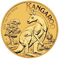 Australijski Kangur