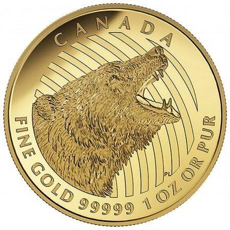 Zew Natury Grizzly Złota Moneta 1 uncja 24h