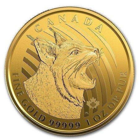 Zew Natury Ryś Rudy Złota Moneta 1 uncja 24h